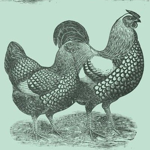 Victorian etching Wyandotte Chicken and Rooster