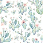 Rlove_dreaming_succulents_shop_thumb