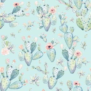 "8"" Love Dreaming Boho Style Succulents / Aqua"