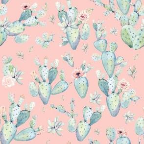 "8"" Love Dreaming Boho Style Succulents / Peach"