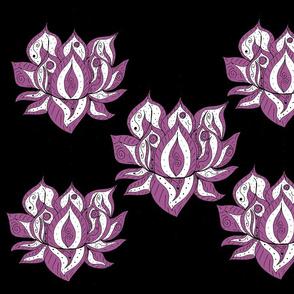 Lotus Flowers on Black