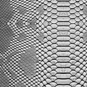 Silver Python Snakeskin