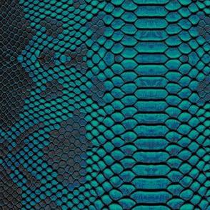 Teal Python Snakeskin Print