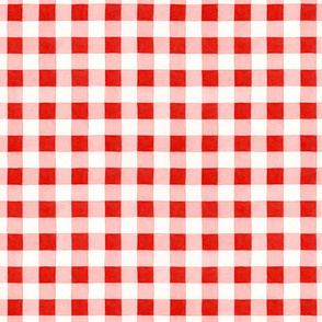 Classic red and white gingham