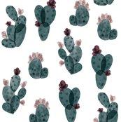 Rfall-cactus_shop_thumb