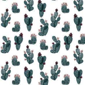 spruce autumn cactus // medium