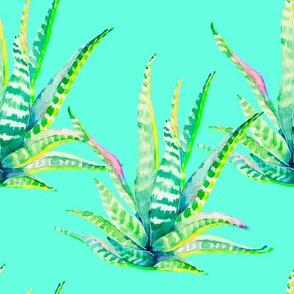 """8"""" Cactus Crazy Aqua"""