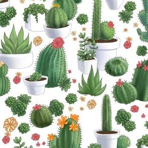 Succulent_Cacti_11x11