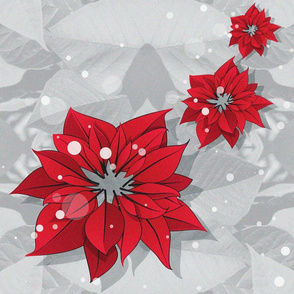 Poinsettias Christmas Flowers 3