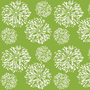 zinnia greenery