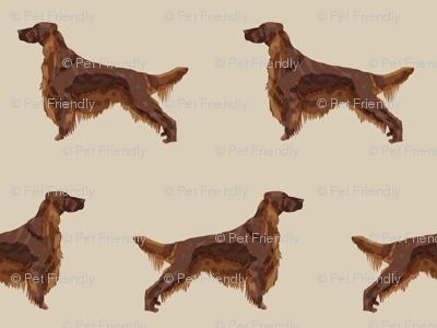 Irish Setter dog breed fabric pattern sand