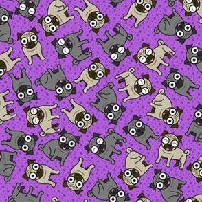 Pug-a-Dot (Small Purple)