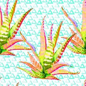 "8"" Pink Cactus Crazy Aqua Triangles"