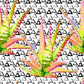 "8"" Pink Cactus Crazy Triangles"