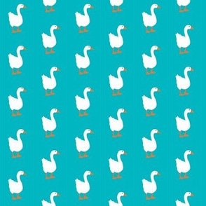 Little White Goose on Water Background with Orange Bill and Feet