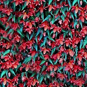 ColorPopped Ivy