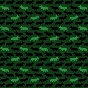 Small green camo Pembrokes