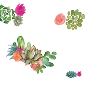 Cactus Floral and Succulents