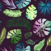 Tropicalleavesplum_shop_thumb