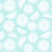 Citrus Wheels - blue and white