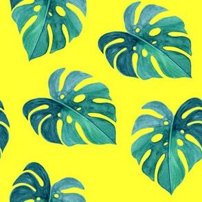 "8"" Nights in Havana - Green & Bright Yellow"