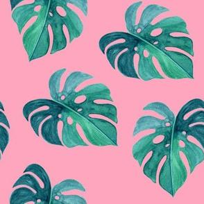 "8"" Nights in Havana - Green & Pink"
