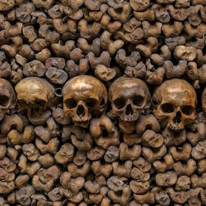 Bones0092
