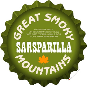 Soda Nation Pillow Panel (Great Smoky Mountains National Park) || United States America parks typography bottle cap bottlecap pop travel summer vacation road trip home decor North Carolina Tennessee