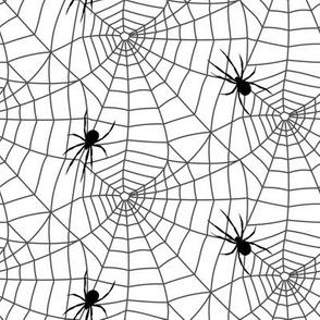 spider webs - grey and white w/ spider - halloween