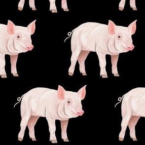 This Little Piggy - on Black