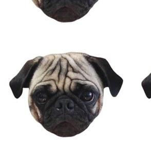 Pug Mug // Quilt Square
