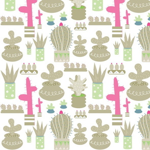 Cactus_in_gray_and_green