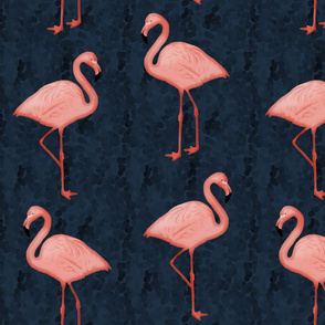 Flamingos Coral/Navy