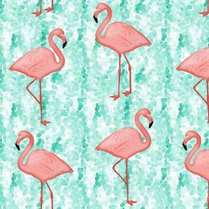 Flamingos Coral / Aqua