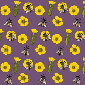 Buttercup_repeat_mauve