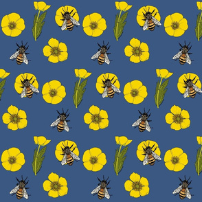 Buttercup_repeat_mid_blue