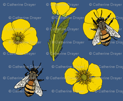 Buttercup repeat mid blue