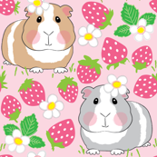 guinea-pigs-in-a-strawberry-patch
