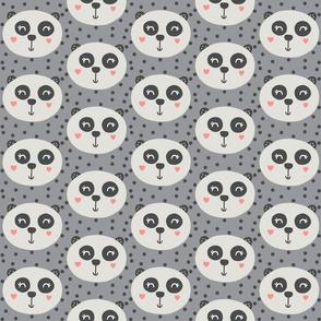 Panda on Grey - Panda Bear