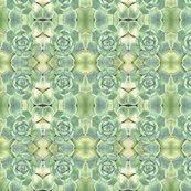 Rlt_green_succulents_1688_shop_thumb