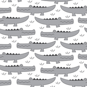 grey gators