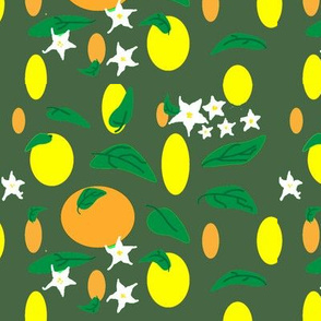 Citrus_fruit_and_flowers_on_dark_green