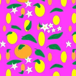 Citrus_fruit_and_flowers_on__bright_pink