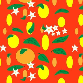 Citrus_fruit_and_flowers_-_Christmas_colors