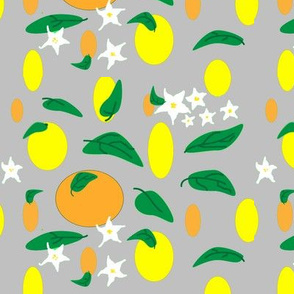 Citrus_fruit_and_flowers_on_grey