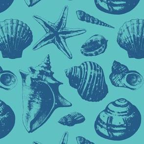 Seashells - Teal Blue