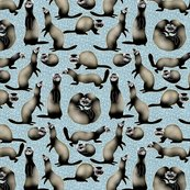 Rra_busyness_of_sable_ferrets_on_blue_shop_thumb