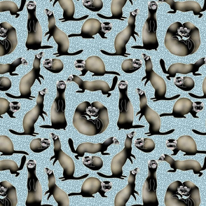 A Busyness of Sable Ferrets on Blue