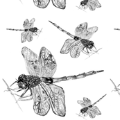 dragonfly_spoonflower3