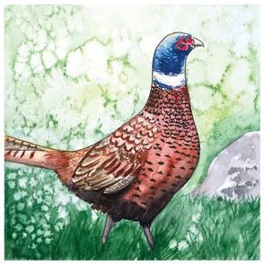 Pheasant pillow